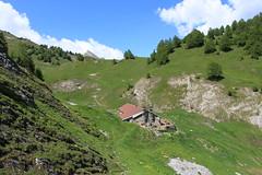 Lui d'Août (bulbocode909) Tags: valais suisse ovronnaz luidaoût montagnes nature forêts arbres printemps paysages alpages cabanes vert bleu nuages sentiers