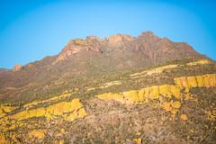 A Concept (Thomas Hawk) Tags: america arizona bartlettlake cavecreek tontonationalforest usa unitedstates unitedstatesofamerica yellowcliffs cacti cactus desert rioverde us fav10 fav25