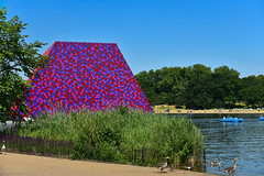 The London Mastaba / III (Images George Rex) Tags: 9f8f1823fbfe40cba527d9b93a00a0ee london westminster uk thelondonmastaba christo christoandjeanneclaude sculpture lake publicart theserpentine england photobygeorgerex unitedkingdom britain imagesgeorgerex mastaba christojavacheff geese