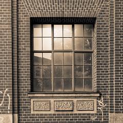 Dirty window (Pascal Volk) Tags: berlin prenzlauerberg prenzlberg berlinpankow monochrome sepia wideangle weitwinkel granangular superwideangle superweitwinkel ultrawideangle ultraweitwinkel ww wa sww swa uww uwa canonpowershotg1xmarkiii 15mm dxophotolab dxofilmpack ilforddelta400