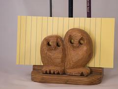owls1 (boslater) Tags: twins flickrfriday treen owls