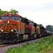 2/3 BNSF 8204 Leads EB L570 Manifest Iowa Falls, IA 6-28-18