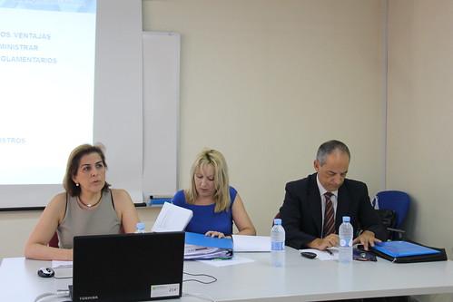 Jornada sobre el SII del IVA. Valencia (29-06-2017)