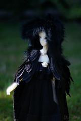 """Lenore"" in the garden (Mittebam) Tags: bjd raven lenore dollchateau doll bella"
