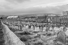 320A7108 The graves of the people who made the town (Leeds Lad at heart) Tags: graves headstones monochrome bw yorkshire uk england whitby church cemetry buildings