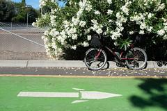 Commute (What Photos Look Like) Tags: 2018 35mm 35mmequiv 32 bayarea bjorke botzillacom california daylight fujifilm fuji fujix fujix100f fujifilmx100f kevinbjorke manual photorant sf sanfrancisco standard strobe wideangle x100f bike icycle somabikes minivelo siliconvalley usa