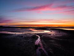 The Last Trickle (ajecaldwell11) Tags: xe3 ahuririestuary sunset ankh water fujifilm light tide newzealand napier pink orange hawkesbay sky ahuriri mud caldwell dusk clouds