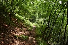 DSC_1819 (gregorv) Tags: slovenia slovenija kum planine mountains mountain nature narava