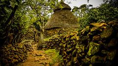 Niño escondido en Poblado Konso, etnia Patrimonio de la Humanidad Unesco (día 6) (pepoexpress - A few million thanks!) Tags: nikon nikkor d750 nikond75024120f4 nikond750 24120mmafs pepoexpress konso ethiopia africa poblado etnias village nature