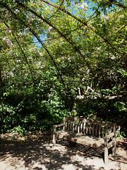 2018_06_0585 (petermit2) Tags: playground greyworld pergola aviary rose roses yorkshiresculpturepark ysp westbretton wakefield westyorkshire yorkshire