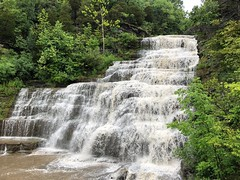 Hector Falls (Herculeus.) Tags: 5photosaday