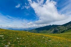 Primavera prealpina (ez.81) Tags: cielo nuvole fiori prati montagna lario montilariani lombardia italia