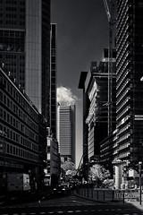 20180417-DSC3755 (A/D-Wandler) Tags: frankfurtammain hessen deutschland hochhaus wolkenkratzer architektur gebäude silberturm commerzbanktower omniturm japancenter grosegallusstrase blackwhite bw kontrast monochrom himmel bankenviertel einfarbig stadt