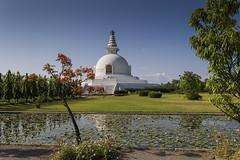 Peace Pagoda (Henry der Mops) Tags: 90a8536 peacepagoda nepal asien lumbini lumbinisanskritik stupa buddhismus buddhism mplez henrydermops landscape landschaft rummindai unescoworldheritage unescoweltkulturerbe friedensstupa worldpeacepagoda