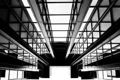 Feel ordinarily complicated (Ladistorta) Tags: architettura architecture buildings edifici lines geometrie abstract bn bw blackandwhite biancoenero perspective prospettiva