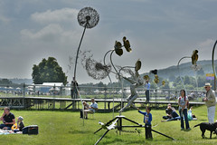 Wildflower Meadow Sculpture (Bri_J) Tags: rhs chatsworthflowershow2018 chatsworthhouse edensor derbyshire uk chatsworth flowershow nikon d7200 wildflowermeadowsculpture wildflowermeadow sculpture fantasywireltd hdr