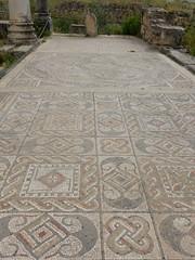 Volubilis, Roman ruins, Morocco (Mulligan Stu) Tags: mosaics berber romanruins unesco morocco unescoworldheritagesite roman maroc volubilis