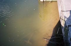Where Brislington Brook meets the Avon (knautia) Tags: brislingtonbrook riveravon stannes bristol england uk june 2018 film ishootfilm olympus xa2 olympusxa2 kodak ektar 100iso nxa2roll32 avon river