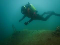 Vintage diving (CZDiver) Tags: vintagedivinggear vintagewetsuit vintagescuba vintagescubagear aqualungmistral doublehosescubaregulator scubagear scubadiving scubadiver scuba scubatank divinggear