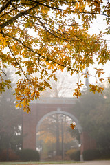 Campus Fall Fog 2017 (Centre College) Tags: 2017 arch campus day dreamy fall fog morning topshot tree walking danville kentucky unitedstates usa