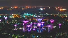 Hotel Room Views 2 (brykyoung) Tags: singapore garden night lights marina bay summer 2018 asia