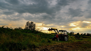 Farmer's sunset | SONY �7III & Sigma 24~105mm ƒ/4 DG OS HSM Art on Sigma MC-11