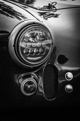 DSC_3250-Edit (craigchaddock) Tags: socalshelbyamericanautomobileclub shelby cobra shelbycobra