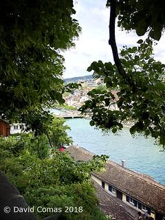 Zurich - Mirador de Lindenhof