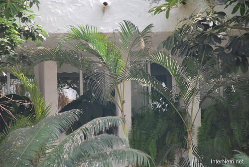 Готель Хардін Тропікаль, Тенеріфе, Канари  InterNetri  304