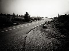 Road in Acadia National Park, Maine (` Toshio ') Tags: toshio maine acadia cadillacmountain road street pine tree nature usa america fujixt2 xt2 bw black white
