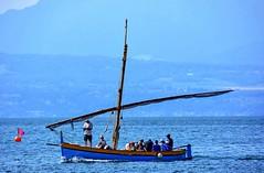 Barque à voile latine typique (Diegojack) Tags: morges vaud suisse d7200 nikon nikonpassion rncontre manifestation voileslatines bateaux léman lac barques catalane groupenuagesetciel