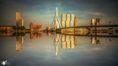 [E X P L O R E] Reflecting the city II (Robert Stienstra Photography) Tags: rotterdam skyline skylines cityscape cityscapes river riverscape riverscapes reflection reflections reflecting twilight sunset sunsetphotography sunsets citysunset archhitecture bigcity 010 gers waterscape waterfront longexposure longexposurephotography orange bridge bridges erasmusbridge erasmusbrug dutch robertstienstraphotography nikond7100 tokina1224mm
