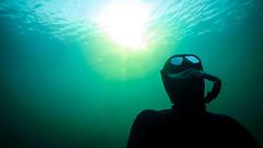 Underwater Sundowner (Niklas FliNdt) Tags: anpnea apnea freediving water underwater diving scuba suit mask snorchel fishes sun blue green lake sea ocean travel geeste
