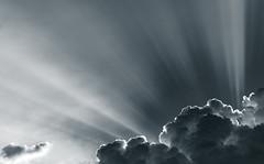 Wolkenlicht... (st.weber71) Tags: nikon d850 wolken niederrhein schwarzweis blackandwhite himmel natur licht sonnenlicht wolkenstimmung outdoor hünxe germany deutschland nrw art romantik