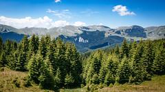 Bucegi Mountains II