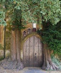 Natural Porch (Grooover) Tags: yew trees st edwards stow wold cotswolds grooover church doorway