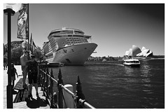 Voyager on the Harbour (cupitt1) Tags: voyager seas singapore sydney harbour bridge opera house travel cruise sailing