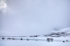 Whiteout (Joost10000) Tags: snow white ice winter river trees tree mountain mist clouds lofoten islands norway norge noorwegen norwegen europe lapland arctic green canon canon5d eos wild wilderness cold chill scenic unnstad nordland