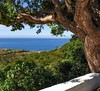 Sunny day (piotrkaminski) Tags: brown holidays holiday philippines filipino natural ilovenature blue nice niceweather hot sunday sunny beachview seaside view sky water green trees tree nature