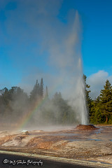 Geyser | Yellowstone National Park | Wyoming (M.J. Scanlon) Tags: 20d animal beauty boil boiling camera canon capture digital geyser hot image mjscanlon mjscanlonphotography mojo nps nationalpark outdoor outdoors outside park photo photog photograph photographer photography picture scanlon scene scenic steam volcanic wild wilderness wow wyoming yellowstone yellowstonenationalpark ©mjscanlon ©mjscanlonphotography rainbow