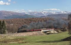 The Highlands line (EltonRoad) Tags: 1264 45699 61264 galatea b1 jubilee class steam train railway line aviemore slochd highlands highland scotland scottish greatbritain xi 11 railwaytouringcompany westcoast hrml railaviemore