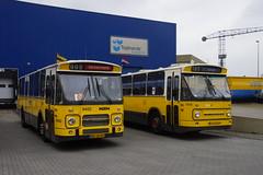 NZH 9452 (Den Oudsten - DAF BG-58-RV) + ZWN 1155  (Den Oudsten - Leyland 92-JB-05 ) bij het Nationaal Bus Museum in Hoogezand 14-04-2018 (marcelwijers) Tags: nzh 9452 den oudsten daf bg58rv zwn 1155 leyland 92jb05 bij het nationaal bus museum hoogezand 14042018 lijnbus streekbus standaard standaardbus gele rijders drenthe nederland niederlande the netherlands pays bas autocars bussen busse buses öpnv mb200 mb 200 openbaar vervoer
