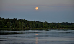 Night on the lake Päijänne. 🌜 Sysmä, Finland, summer. (L.Lahtinen (nature photography)) Tags: finland summer night moon kuutamo moonlight midsummer nature nikond3200 nikkor55300mm naturephotography landscape evening maisema järvimaisema järvi päijänne sysmä suomi europe majutvesi