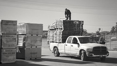 got pallets? (what's_the_frequency) Tags: gotpallets pallets truck load work airconditioners blackwhite bw monochrome myneighborhood neighborhood labor sliceoflife sony h55