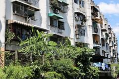 """Bangkok: Khlong (Ali Bentley) Tags: bangkok thailand southeastasia klong khlong """"longtail boat"""""""