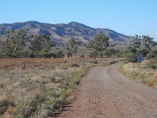 Classic Flinders View