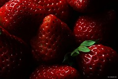 DSC04700 - 複製 (windcolor fan) Tags: c100l strawberry macro micro 微距 ef100mm cactusv6ii insect 580ii 草莓