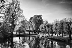 Abends im Schloßpark (GU-JO) Tags: bückeburg graft niedersachsen park schaumburglippe blackandwhite schwarzweis