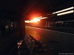 Sunny Seats (C.Kalk DigitaLPhotoS) Tags: sunny sonnig sunset sonnenuntergang sitze seats reflektion reflection sunshine sunlight sonnenschein hamburg germany barmbek barmbekerbahnhof bahnhof trainstation abends abendstimmung evening moody outdoor photo photography red rot orange
