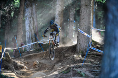 Riding in the forest. (Mattia Bonavida) Tags: mountain bike colours trentino riding race naure tature sport horizontal italy trento mattiabonavida